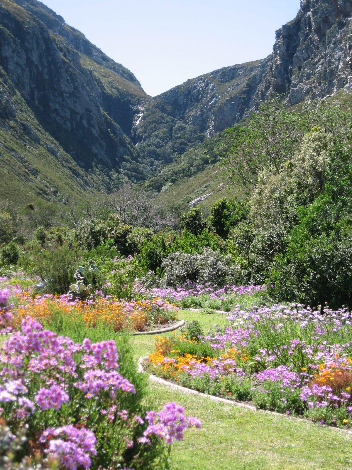 Harold Porter Botanical Gardens, South Africa Gardens, Nima Lodge, South Africa Tourism