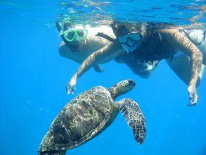 Oahu Snorkeling - www.touristsecrets.com