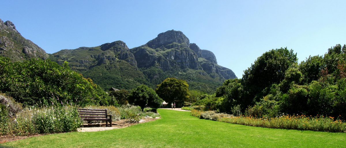 Kirstenbosch National Botanical Gardens, Cape Town, Things To Do In Cape Town