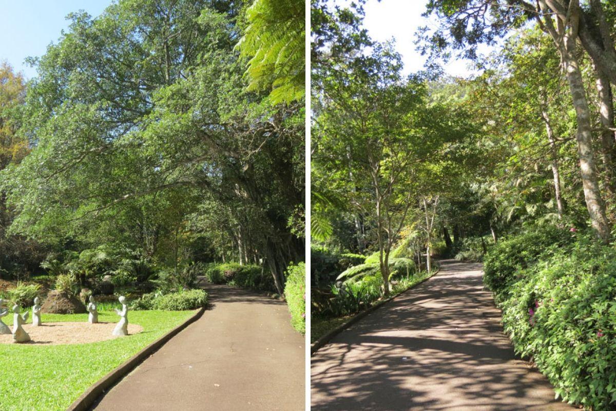 Makaranga Botanical Garden, South Africa Gardens, Nima Lodge, South Africa Tourism