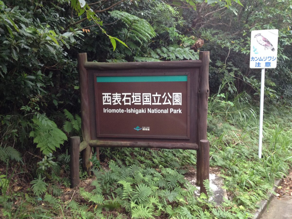 Iriomote-Ishigaki National Park is home to Japan's only sub-tropical rainforest.