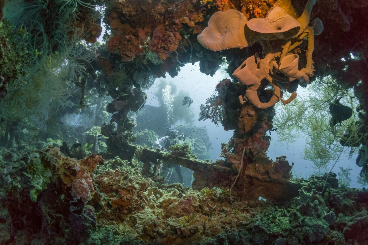 Tulamben Shipwreck