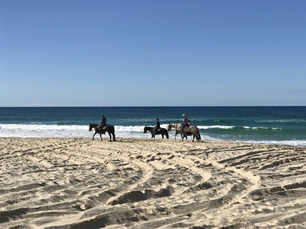 Horseback riding at Gozo Malta