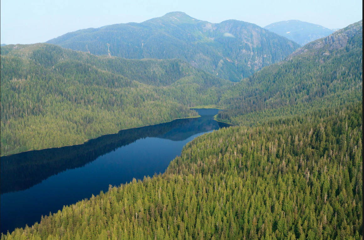 The green and blue jewel that is the Tongass National Forest stands proudly in Southeast Alaska.