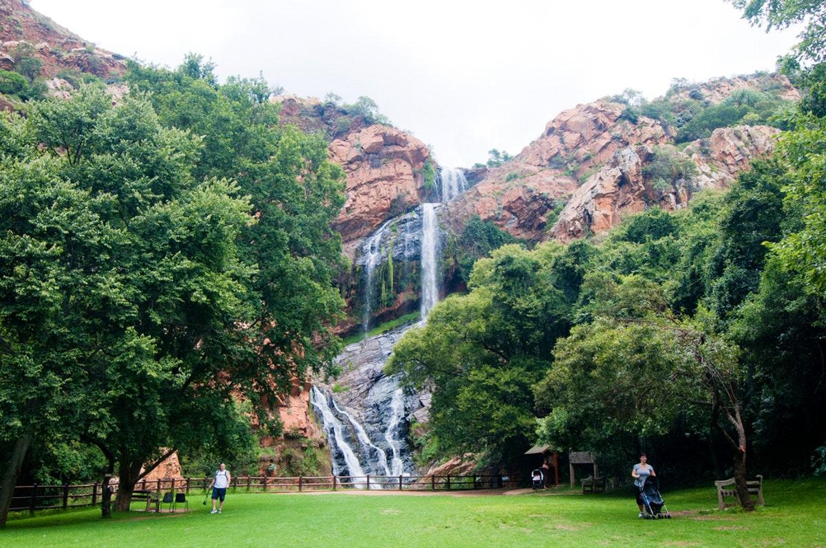 Walter Sisulu Botanical Garden, South Africa Gardens, Nima Lodge, South Africa Tourism