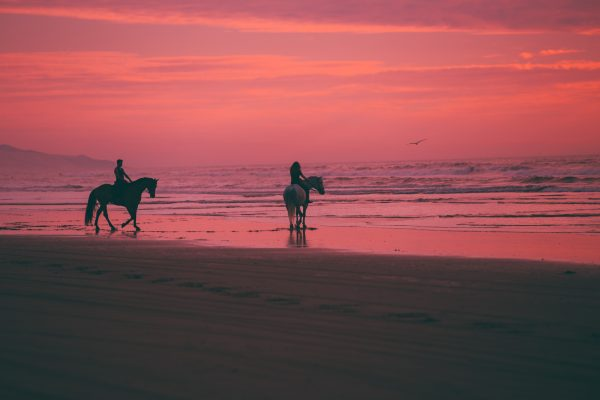 The Best Places To Go Horseback Riding In The US
