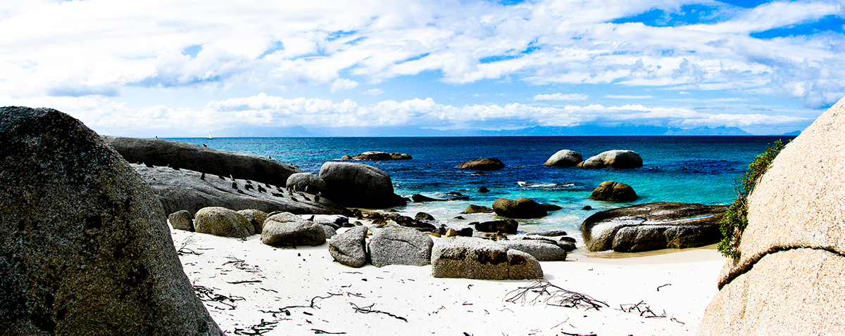 Boulders Beach, Cape Town, Things To Do In Cape Town