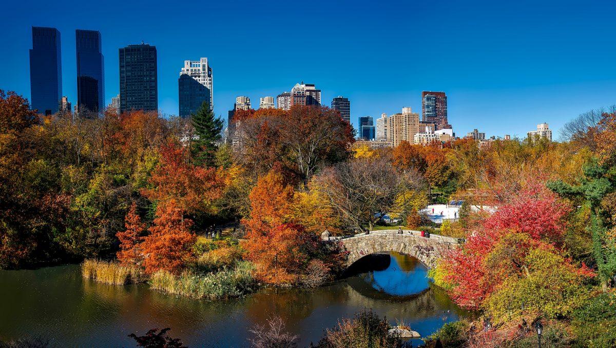 Autumn In Manhattan, New York