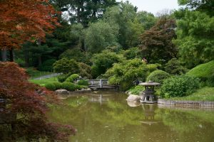 dmirty fisenko h brS34xriI unsplash 300x200 - Everything You Need To Know About The Brooklyn Botanic Garden