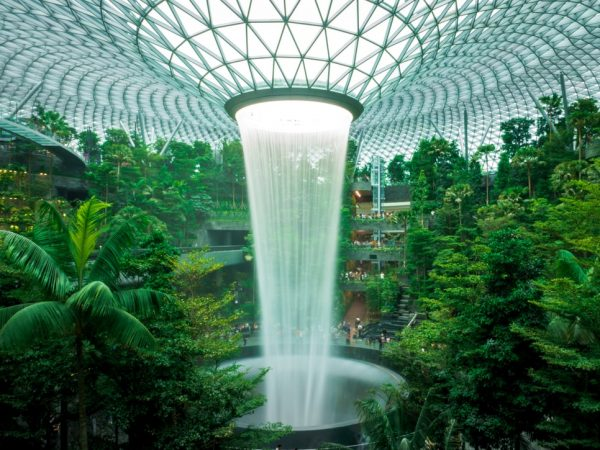 5 Fun Things To Do In Singapore's Changi Airport