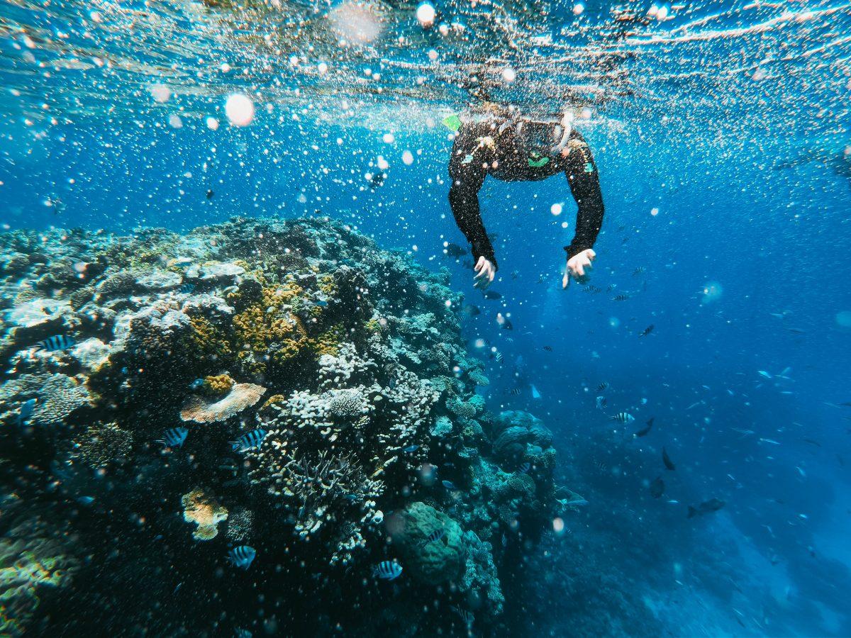 The Great Barrier Reef, Queensland, Australia, Top 3, World Traveller