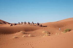 Kalahari Desert in South Africa