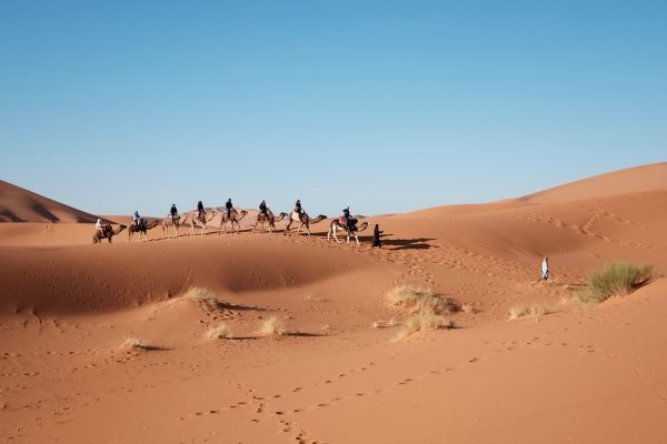 Ultimate Guide To The Lonely Kalahari Desert, South Africa