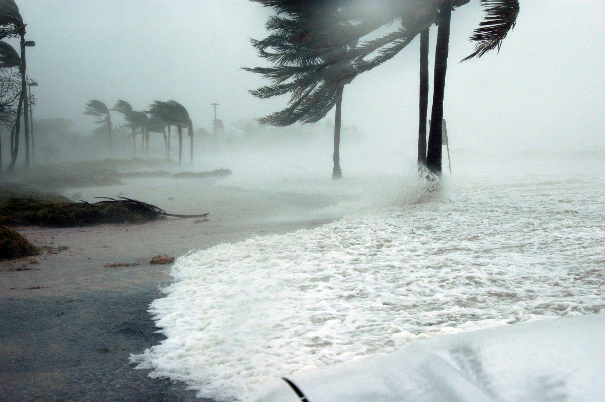 Weather, Hurricane
