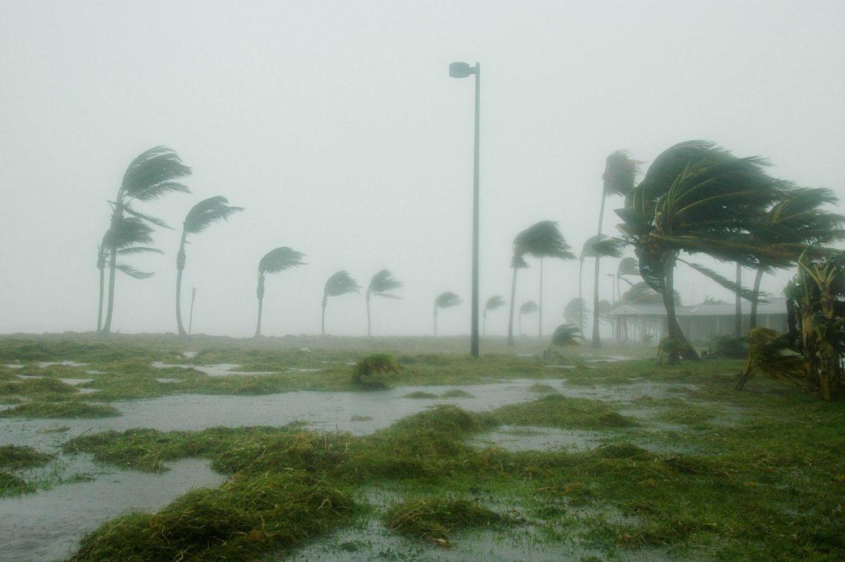 Miami Beach Extreme Weather