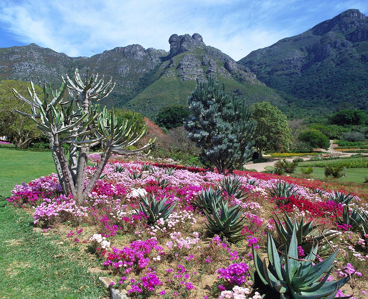 Kirstenbosch Botanical Garden, Cape Town, South Africa, Top 3, World Traveller