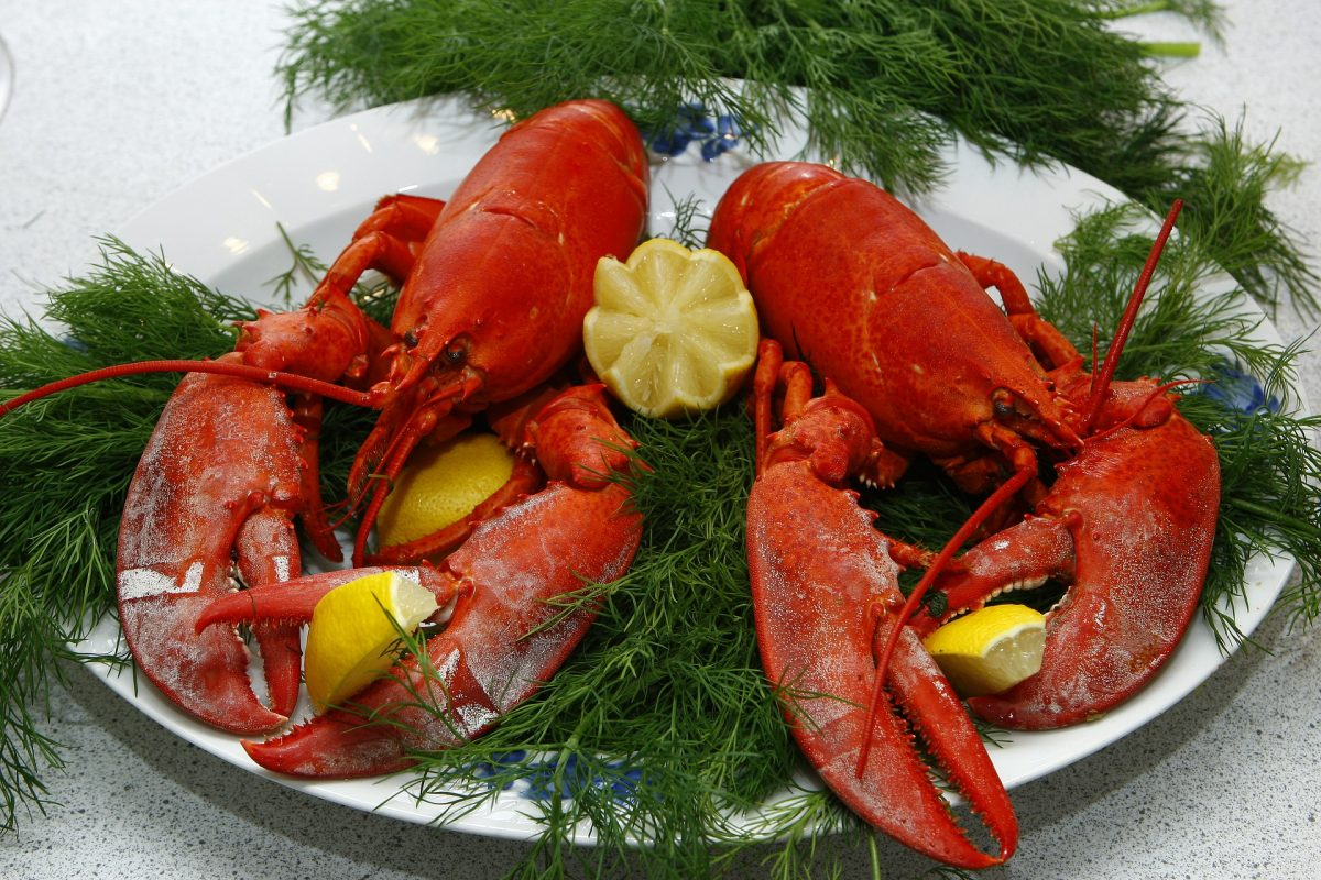 The Best Seafood Restaurants, Lobsters, Row 34
