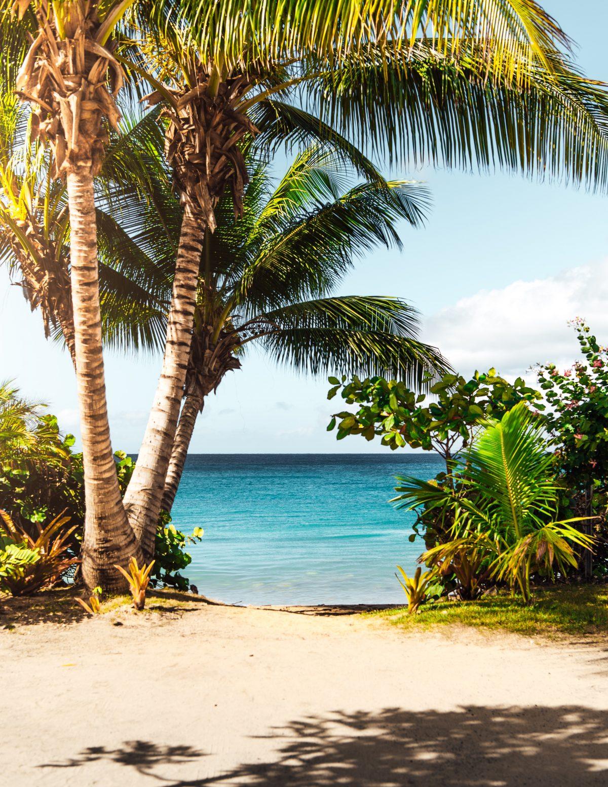 matthew brodeur DH u2aV3nGM unsplash - 5 Best Beaches In Puerto Rico To Visit On Your Trip