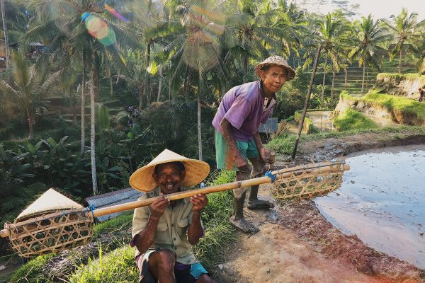 Top 11 Things To Do In Ubud, Bali