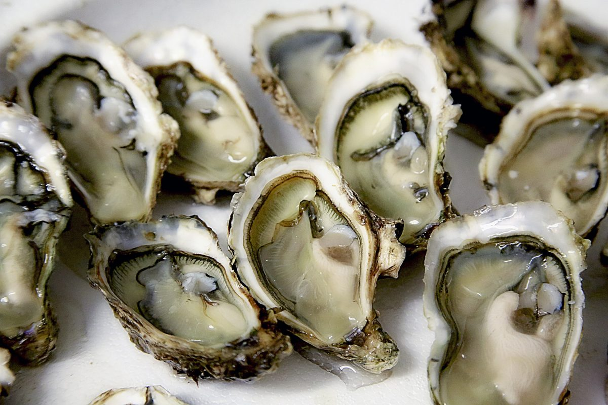 Oysters, The Best Seafood Restaurants, Row 34