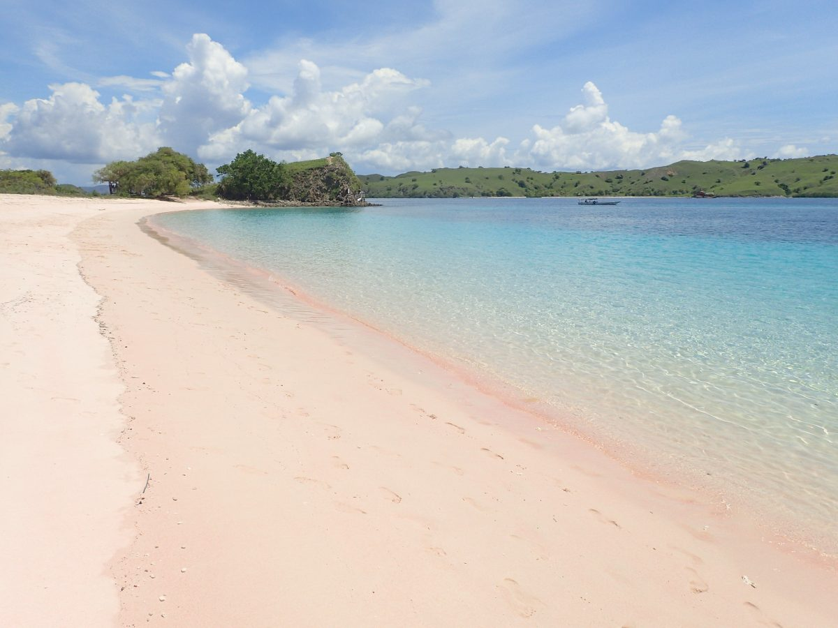 A view of the shoreline on Pink Beach, Komodo Island, Indonesia