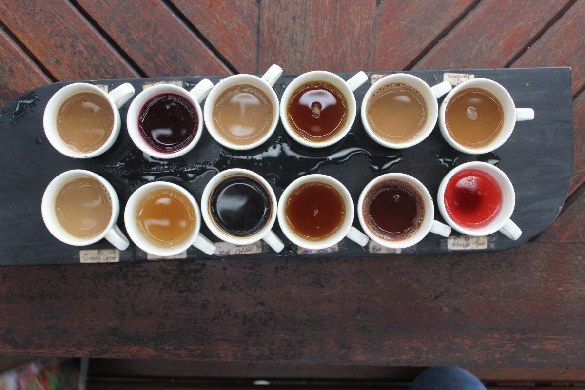Coffee luwak tasting in Ubud Bali