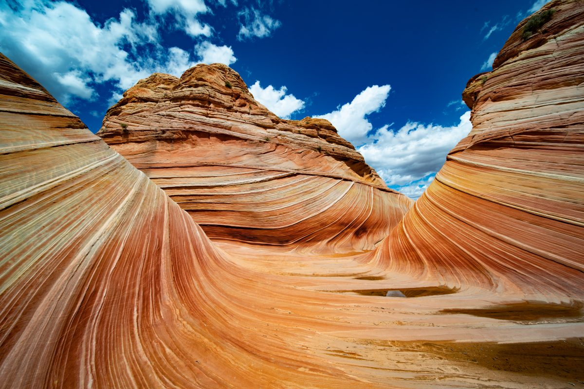 The Wave in Arizona's National Parks