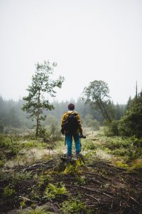 samuel thompson pjk1OPA0YM4 unsplash 200x300 - Why You Need A Trail Camera On Your Next Vacation