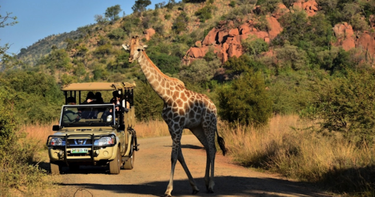South Africa Gardens, Nima Lodge, Pilanesberg National Park, South Africa Tourism
