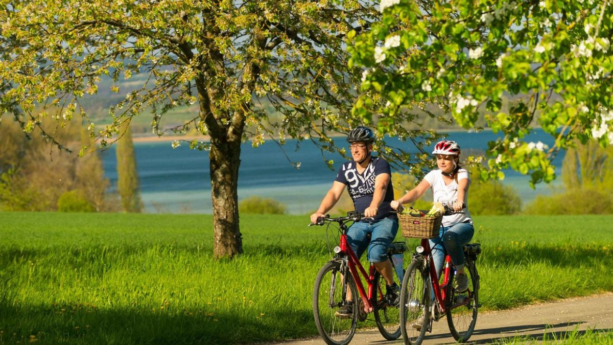 Lake Constance, Cycling