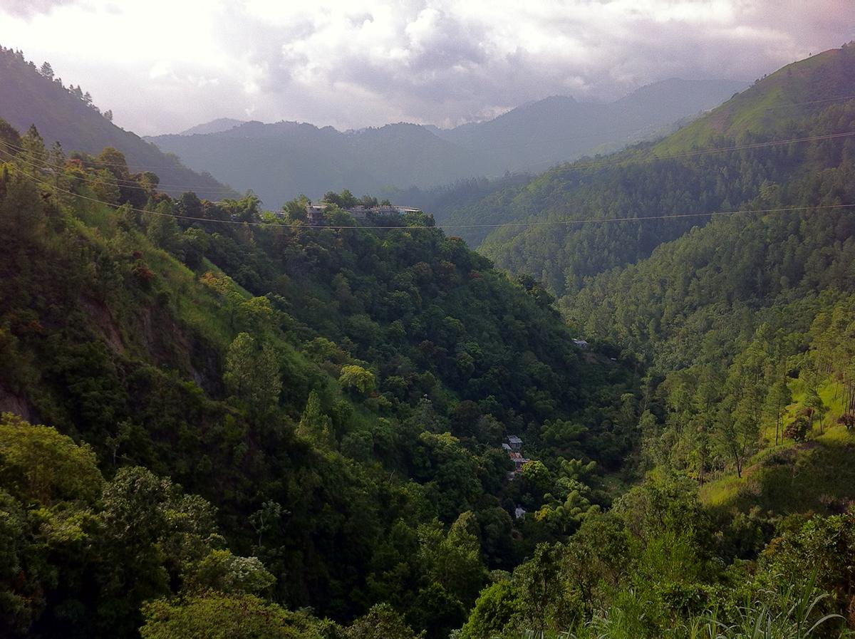 Jamaica Trails, A Jog In Jamaica