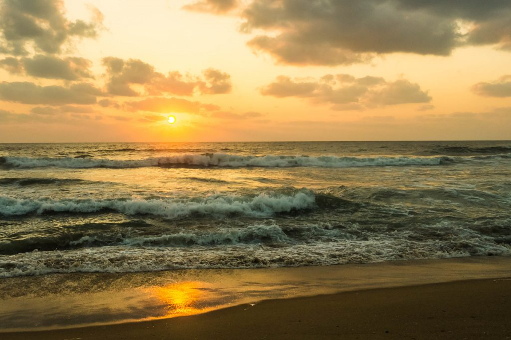 11128693344 7073c4d073 k 1024x682 - Why Marina Beach In Chennai Is A Must-Visit?