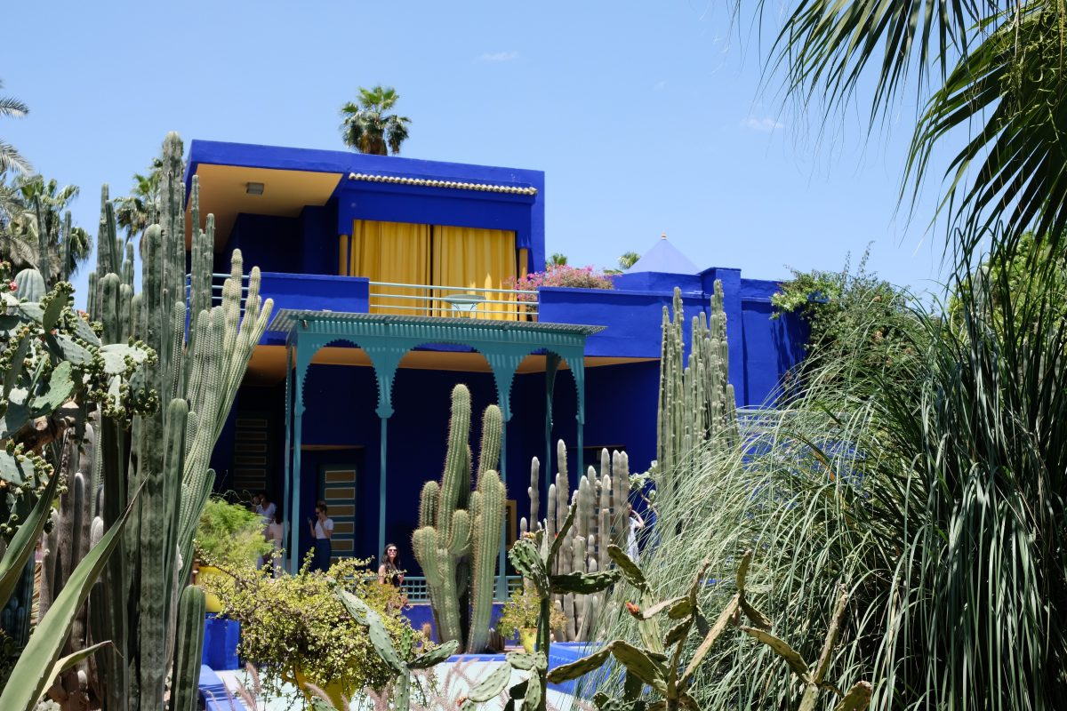Blue and yellow building surrounded by plants