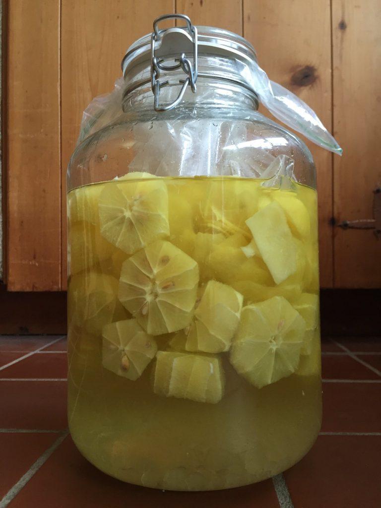 limoncello, recipe