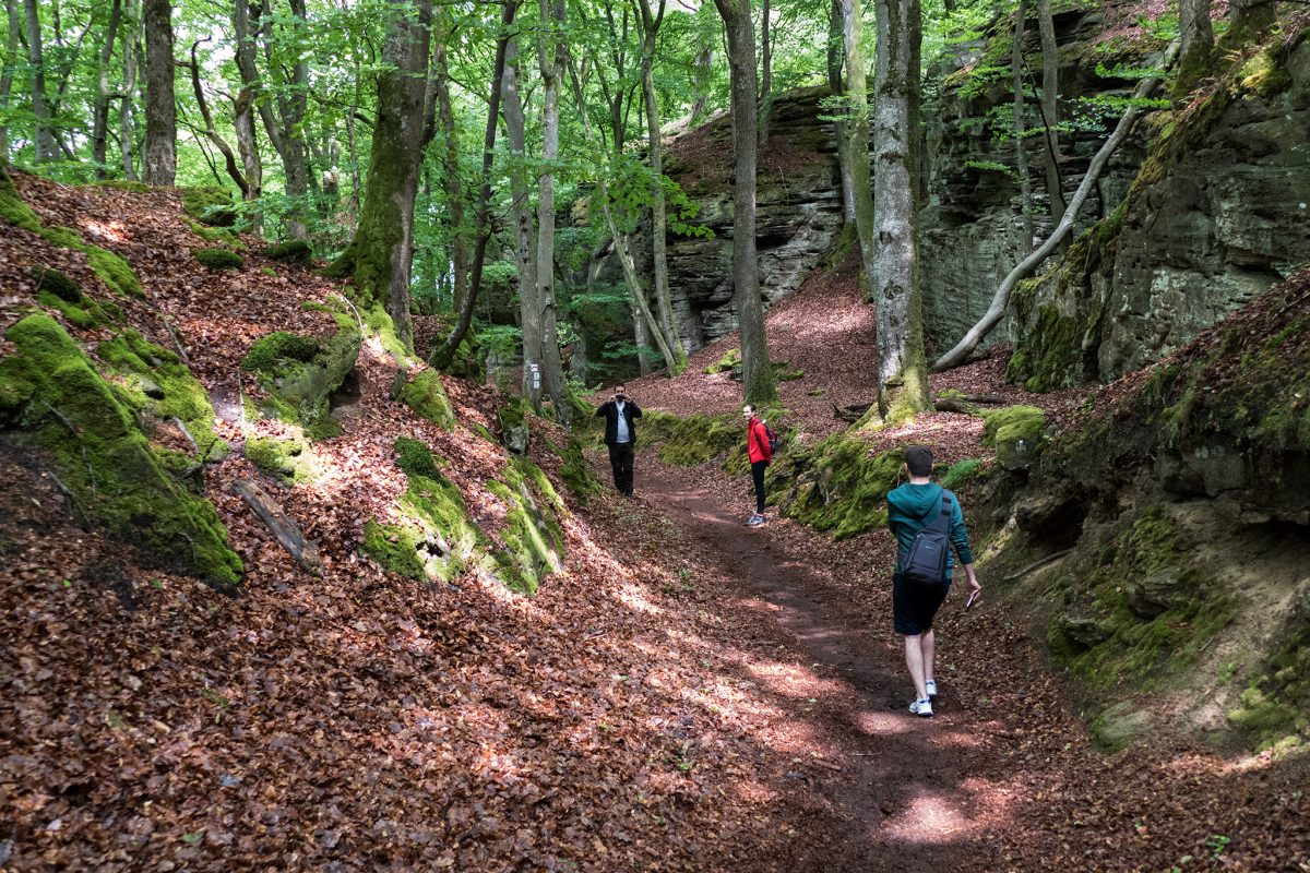 Hiking lovers can also find their paradise in Luxembourg. Mullerthal Trail is 112km long and it contains three big paths.
