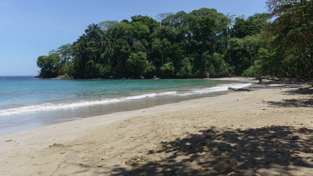 48114971623 f1984915ff k 1024x576 - Top 10 Costa Rica Beaches To Visit For A Relaxing Vacation
