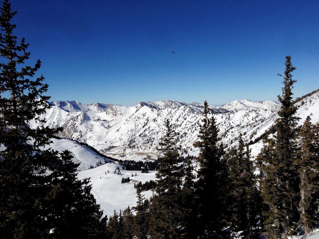 Skiing Resort