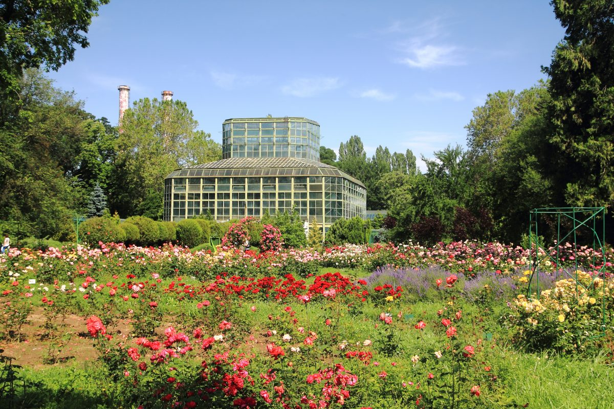 This botanical garden was founded in 1860, and it's under the ownership of the University of Bucharest since 1874.