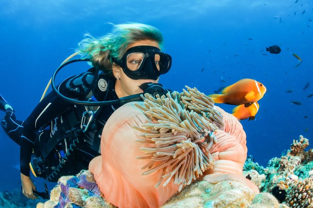 Dive Scuba