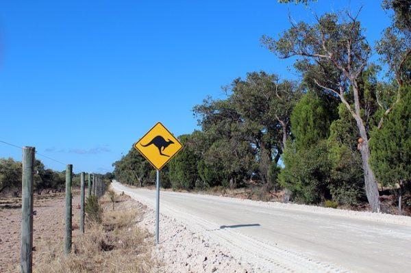 Tips For Driving In Australia