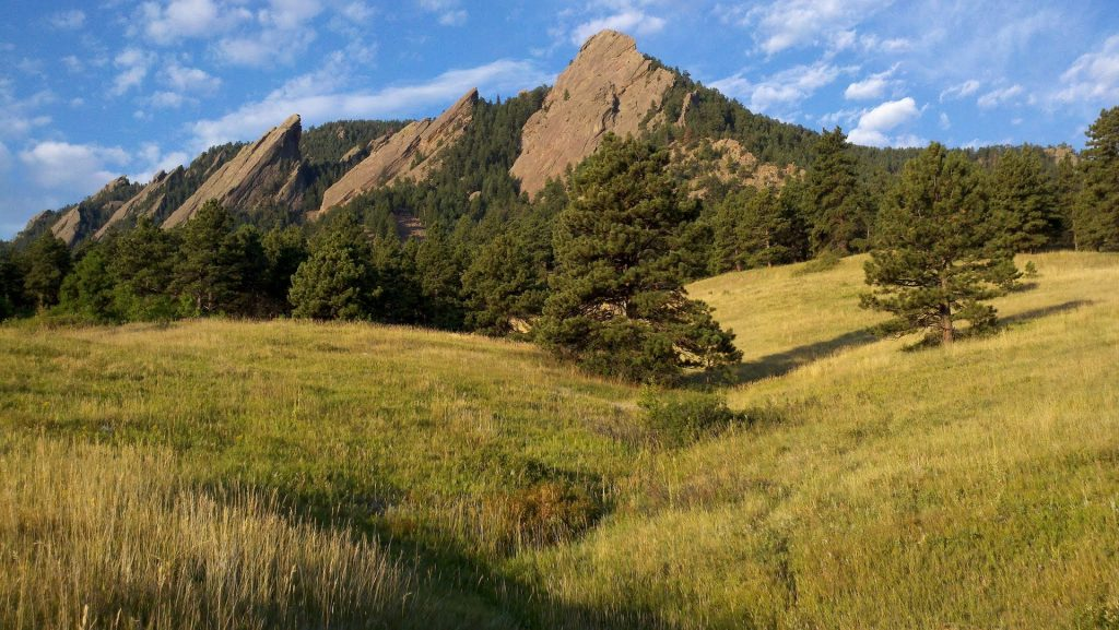 the yellow green grass and rock formations at the Flatirons