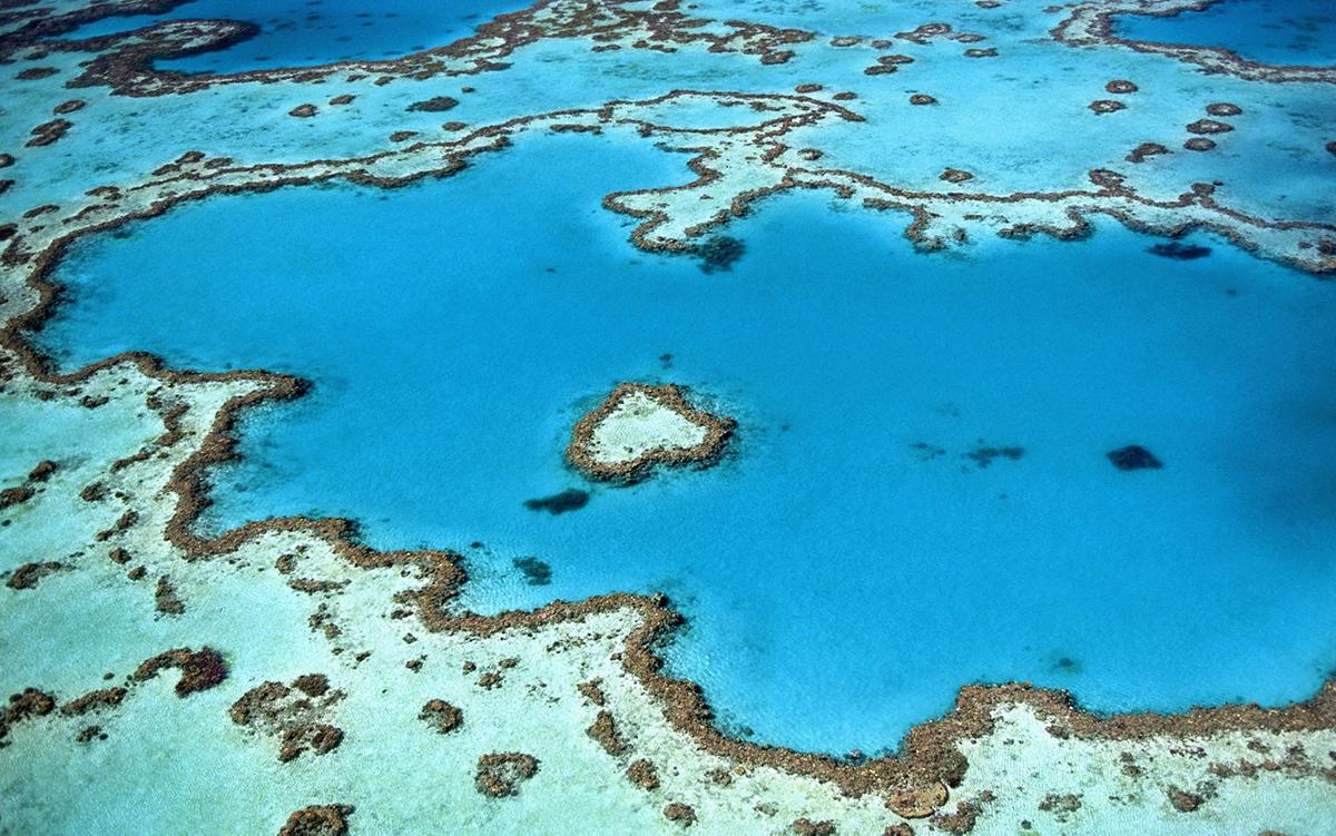 Australia, Visit, Travel, Great Barrier Reef, Ocean
