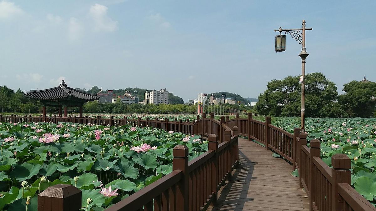 Deokjin Park, South Korea