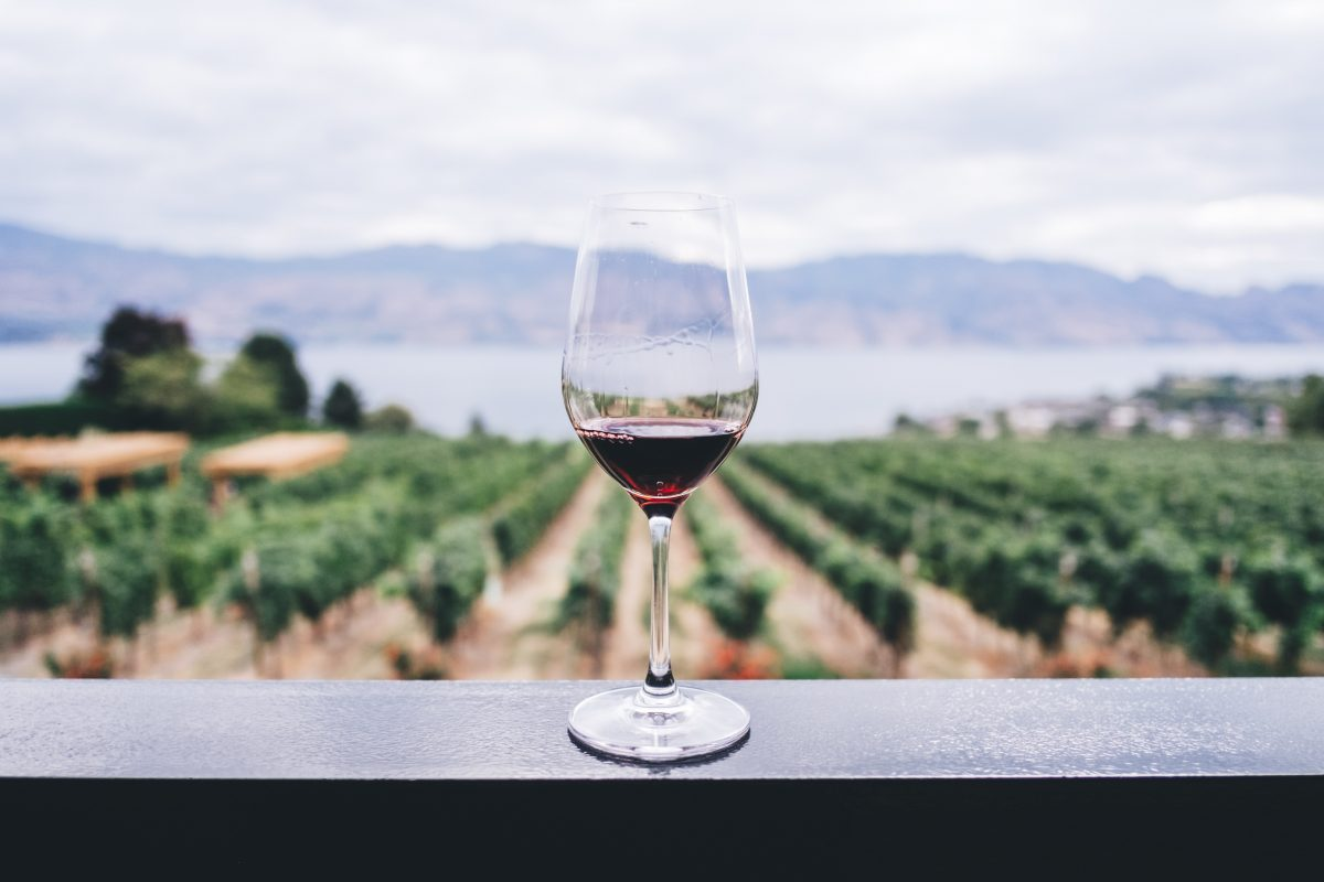 best time to visit australia to enjoy a glass of wine at the winery