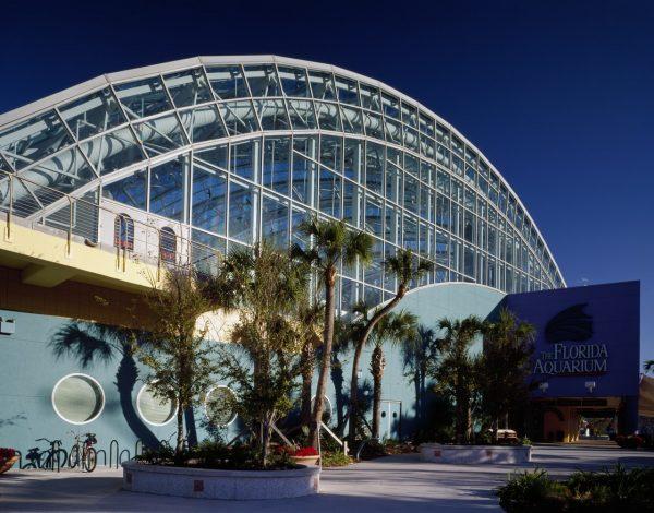Your Complete Guide to Florida Aquarium