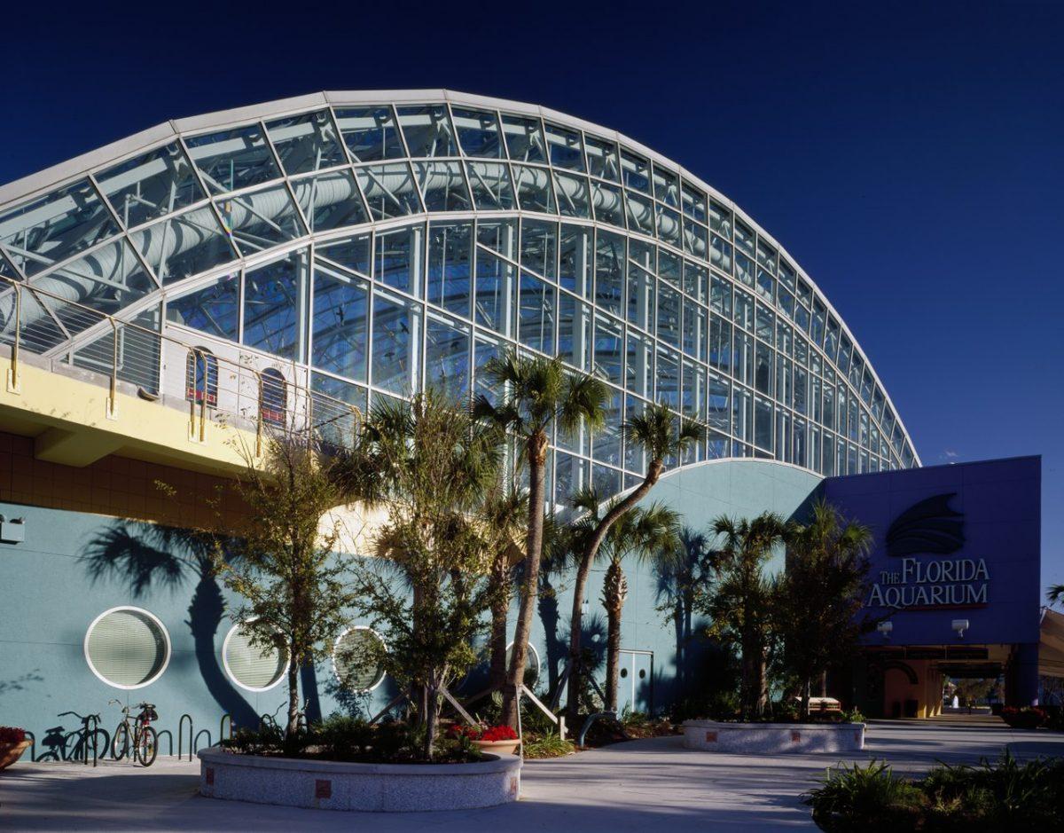 lossy page1 1280px Florida Aquarium in Tampa Florida LCCN2011634588.tif - Your Complete Guide to Florida Aquarium