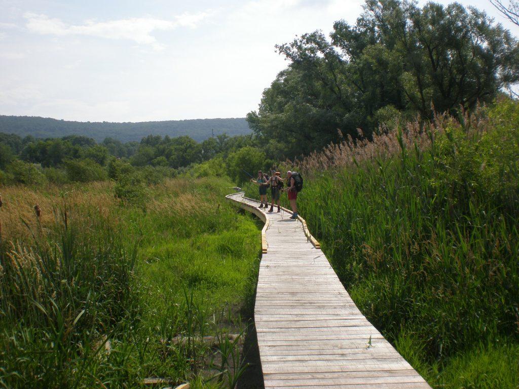 appalachian trail,