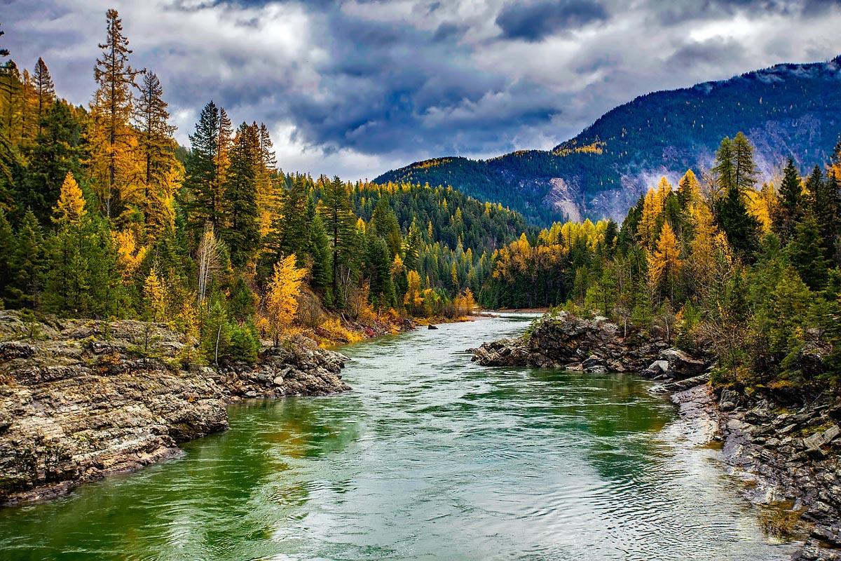 Glacier National Park River