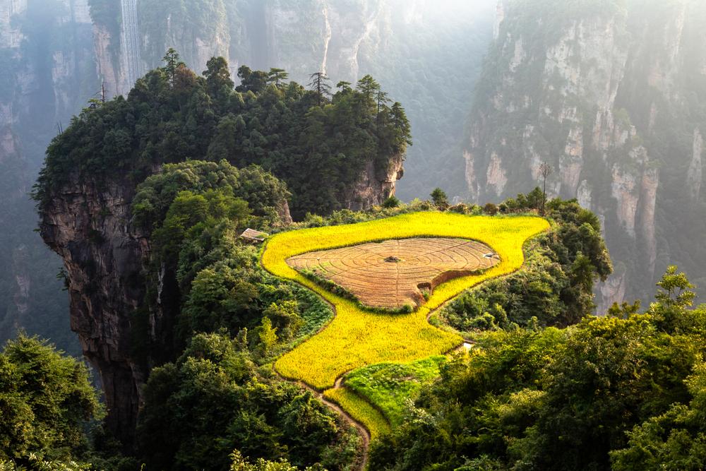 shutterstock 1309341535 - Best Things To Do In Zhangjiajie, China