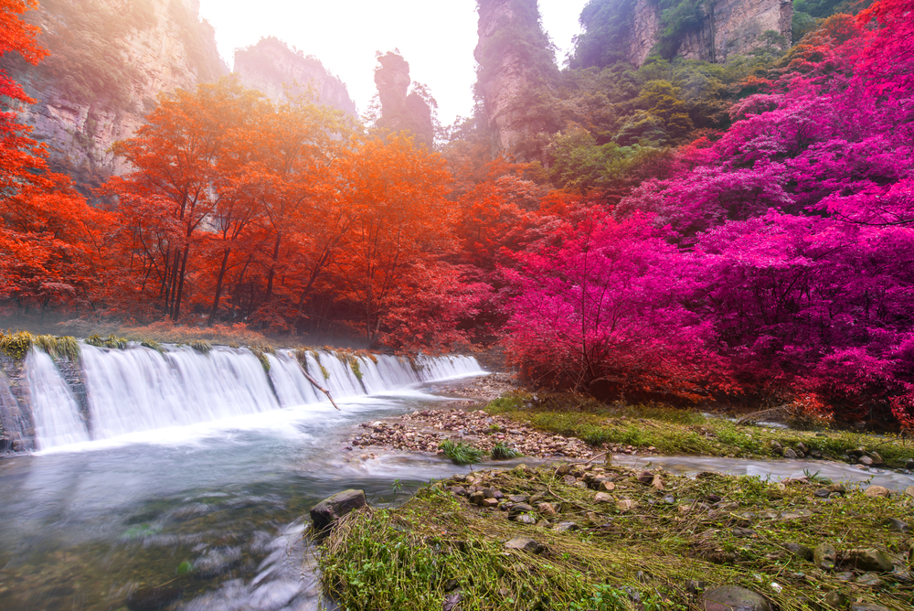 shutterstock 657882610 - Best Things To Do In Zhangjiajie, China